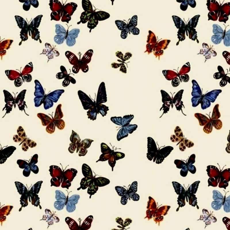 Flight of butterflies furnishing cotton Percale Nathalie Lété by Thévenon
