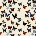 Flight of butterflies Percale cotton upholstery for seats of Nathalie Lété by Thévenon