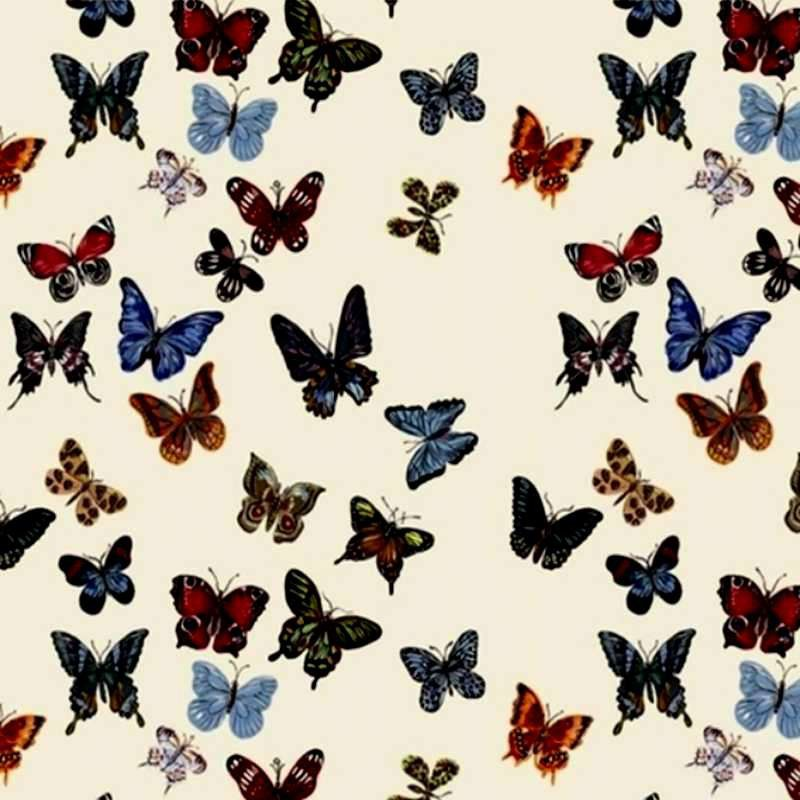 Ready to ask flight of butterflies curtain grommets cotton percale Thévenon the curtain