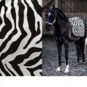 """Africa"" Tissu jacquard velours noir et blanc Casal"