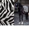 Africa Tissu noir/blanc jacquard velours Casal