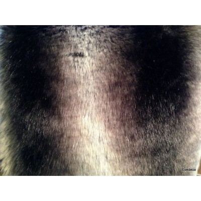 Plaid fake fur mink grey 140x180cm Thévenon