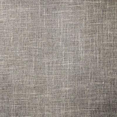 Paros Tissu ameublement toile avec backing argent L.145cm Thevenon 1674911 0215 le metre