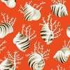 Ok Corail fond saumon 1689604