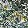 Palm springs lin 1949813