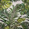 Palmeraie bambou 3042-8898