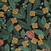 Fruit du paradis coton vert 2311603